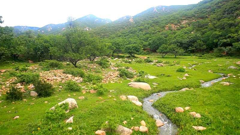 努鲁儿虎山保护区
