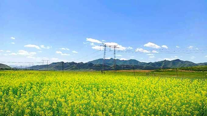 风景这边独好――访朝阳县西五家子乡初级中学纪实